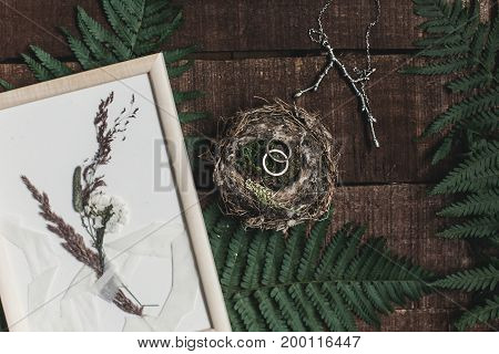 Wedding Rustic Boutonniere And Wedding Rings In Bird Nest On Wooden Background With Fern Leaves. Rus