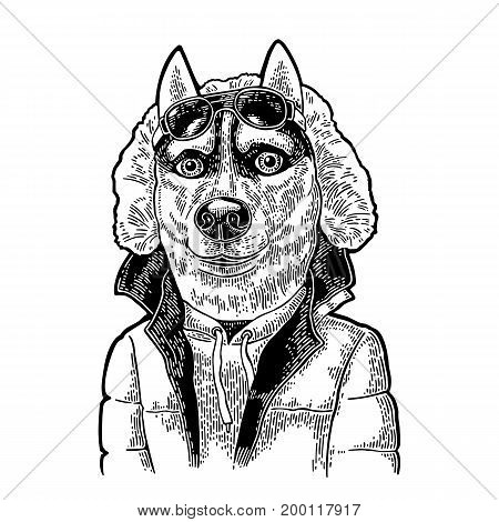 Dog sportsman in human sun glasses and warm winter jacket. Vintage black engraving illustration for poster. Isolated on white background