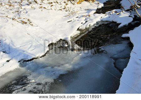 Small Stream In The Snowy Forest