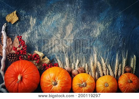 A table decorated with pumpkins, Harvest Festival, Happy Thanksgiving. Autumn background.