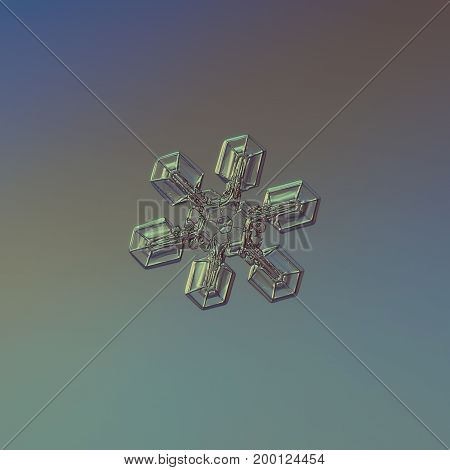 Real snowflake macro photo: star plate snow crystal with six simple broad arms, fine hexagonal symmetry and glossy relief surface. Snowflake glittering on blue gradient background in cold light.