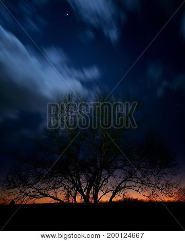 Tree at sunset with stars above and timelapse clouds