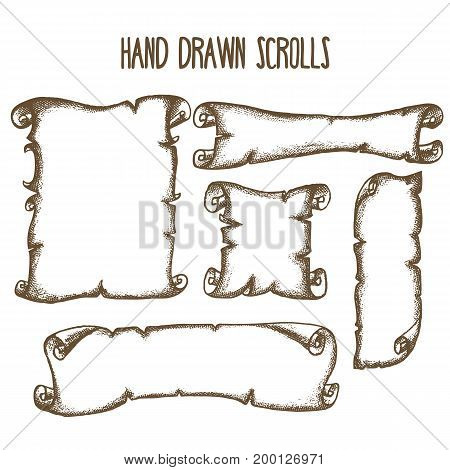 Set of five hand drawn scrolls, vector illustration
