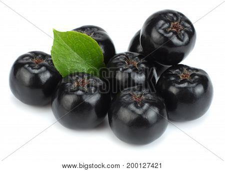 Chokeberry with leaf isolated on white background. Black aronia.