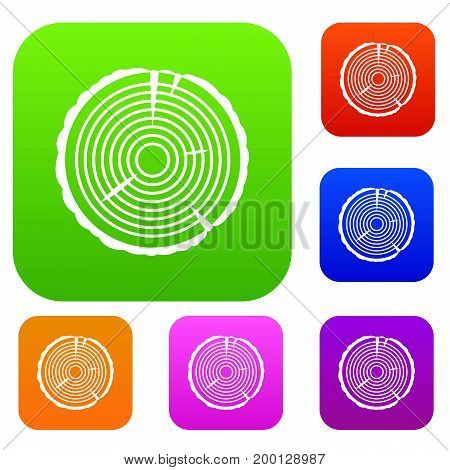 Tree ring set icon in different colors isolated vector illustration. Premium collection