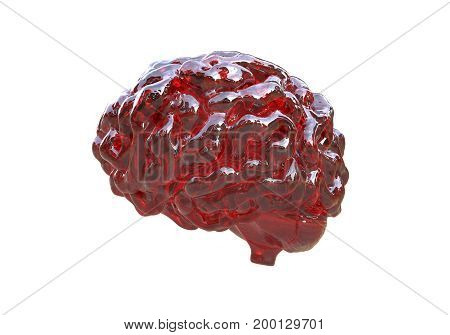 Human brain isolated on white background, 3D illustration