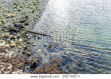 Aerial flat top view down of rocky beach shore in Bar Harbor Maine by Acadia National Park