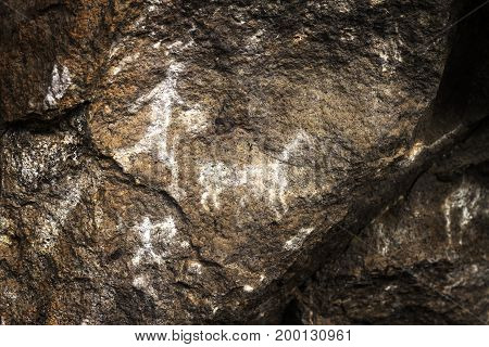 A group of hunters haunts the lama, rupestrian rock art in Sumbay Cave from paleolithic era (6000-8000 BC), Southern Peru