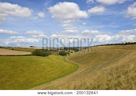 Valley With Dry Grasses