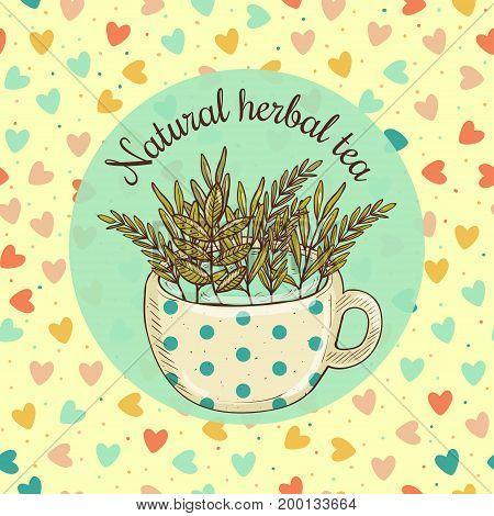 Vector illustration sketch card - herbal tea, craft