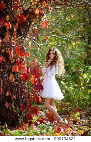 Beautiful young girl with makeup and hair-dress on a background of autumn forest