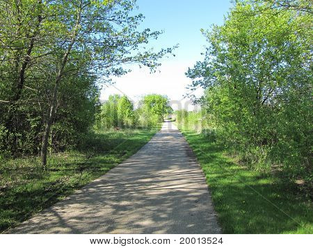 Beautiful sunny day in spring along the bike path