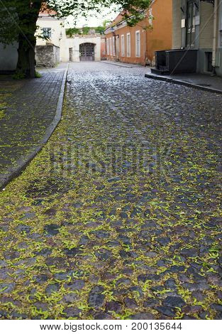 stacked pavement and impressive brick walls. Old city Tallinn Estonia