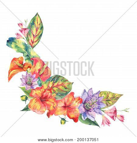 Watercolor tropical flowers greeting card. Hand painted floral wreath with exotic flowers isolated on white background. Fashion design elements