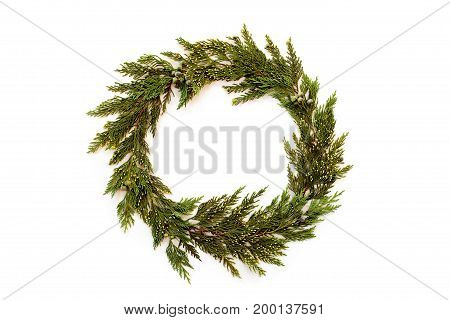 Christmas Round Frame Made Of Winter Evergreen Plants. Flat Lay.