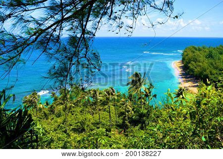 Lush green tropical forest overlooking Kee Beach taken at the Napali Coast in Kauai, HI