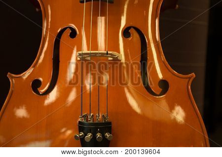 Music instrument beautiful shiny violin clos up