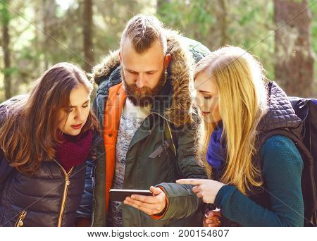 Group of happy, young friends checking a map on a smartphone in forest. Camp, tourism, hiking, trip, concept.