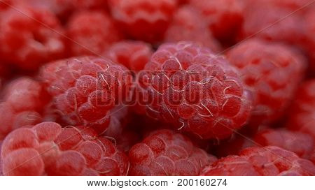 Red, juicy and ripe raspberry. Macro photography.
