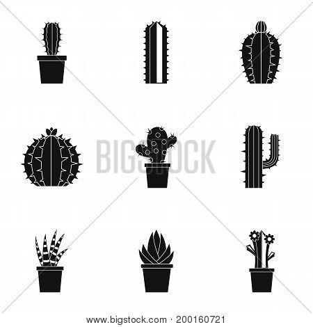 Cactus icon set. Simple style set of 9 cactus vector icons for web isolated on white background