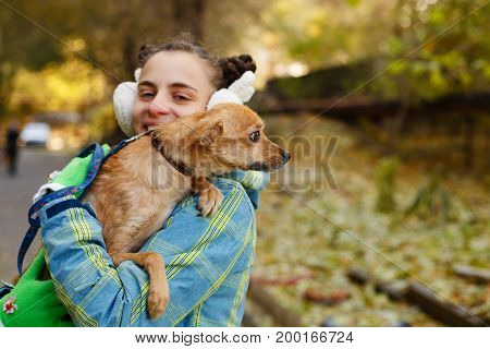 The girl is holding a small dog in her arms. Mistress and home pet for a walk in the autumn park.