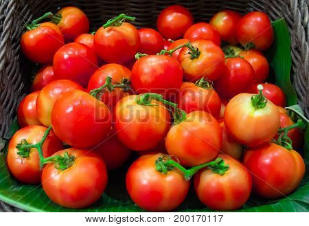 Red ripe tomatoes background,Group of fresh tomatoes.Heap of tomatoes,Tomatoes on banana leaf