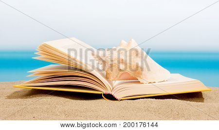Book on the sand relax on the beach