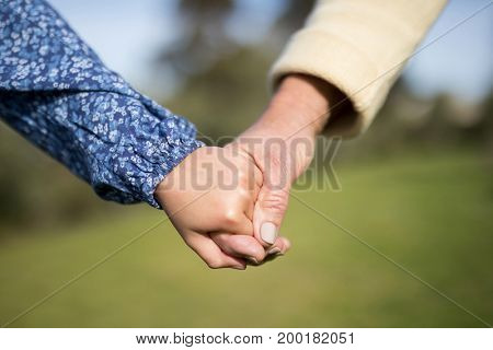 Close-up of granddaughter and grandmother holding hands in garden