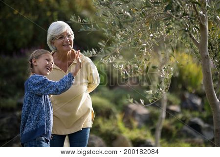 Granddaughter touching tree while grandmother standing beside her in garden