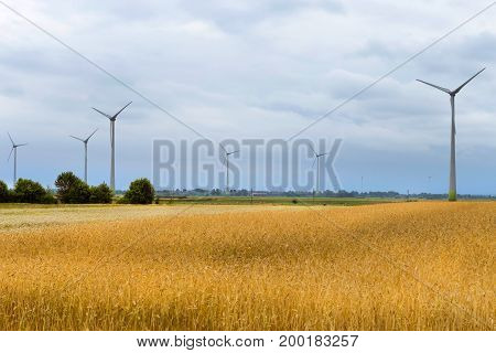 Wind turbine among golden ears of grain crops. Harvesting of wheat ears. Gathered crops on field of agricultural farm. Windmill turbine is environmentally friendly source of energy. Lithuania Baltic
