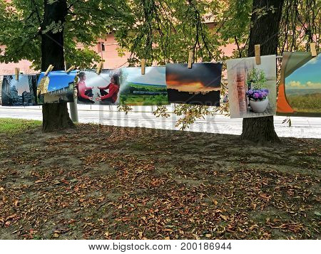 LVIV UKRAINE - AUGUST 13: Photos hanging on clothespins during the charity exhibition