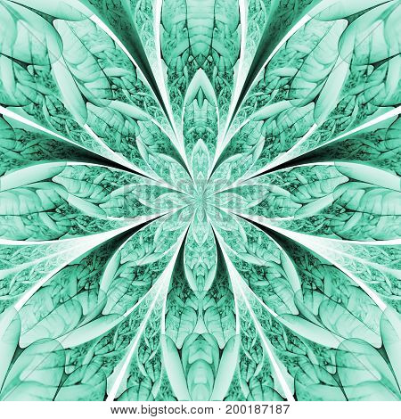 Abstract Exotic Green Flower With Textured Petals On White Background. Fantastic Symmetrical Fractal
