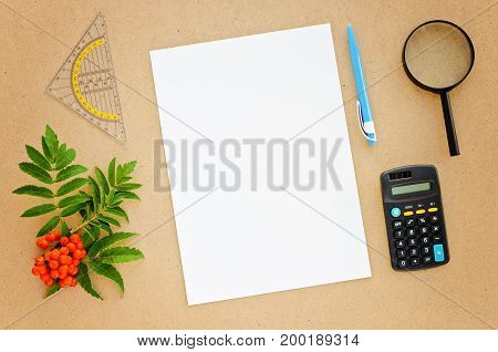 Desk with paper pen calculator magnifier and ruler. Top view flat lay overhead. Copy space background