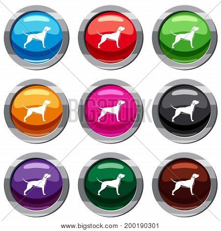 Dog set icon isolated on white. 9 icon collection vector illustration