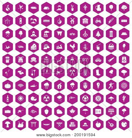 100 tree icons set in violet hexagon isolated vector illustration