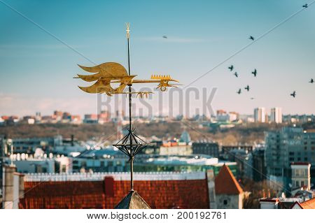 Tallinn, Estonia, Europe. Close Up Of Cock-rope Weather Vane On Roof Of Old Medieval House In Winter Sunny Morning.