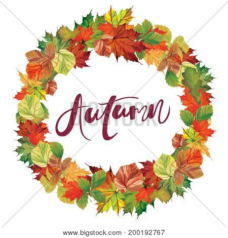 Autumnal round frame. Wreath of autumn leaves. Background with hand drawn autumn leaves. Fall of the leaves.