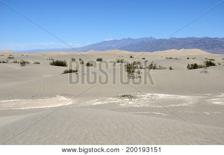 Sand Dunes In The Death Valley National Park, California, United States Of America