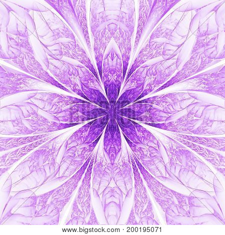 Abstract Exotic Violet Flower With Textured Petals On White Background. Fantastic Symmetrical Fracta