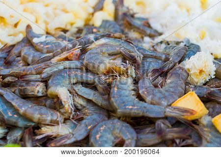 Many dark black or green King Size Shrimps With pieces of fruits.