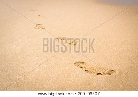 Footprints on the sand beach are directed to the viewer
