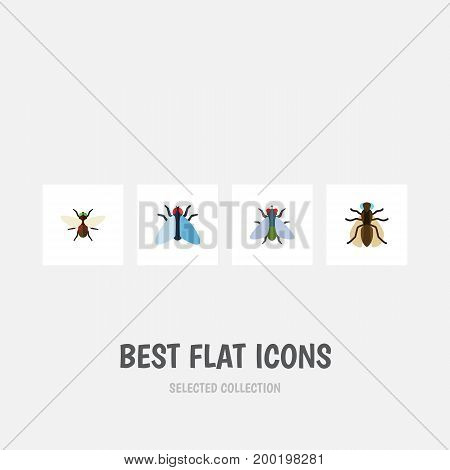 Flat Icon Housefly Set Of Mosquito, Bluebottle, Housefly And Other Vector Objects