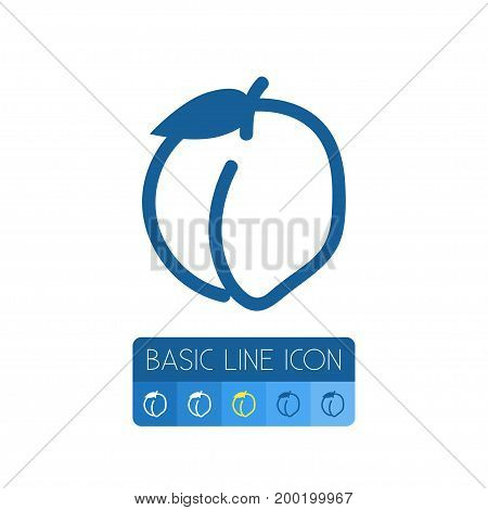 Prunus Vector Element Can Be Used For Peach, Health, Prunus Design Concept.  Isolated Health Outline.