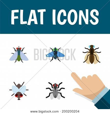 Flat Icon Housefly Set Of Fly, Gnat, Dung And Other Vector Objects