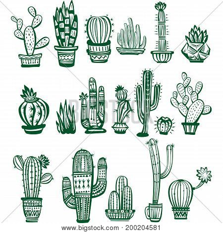 Set of vector green Cactuses of different shapes