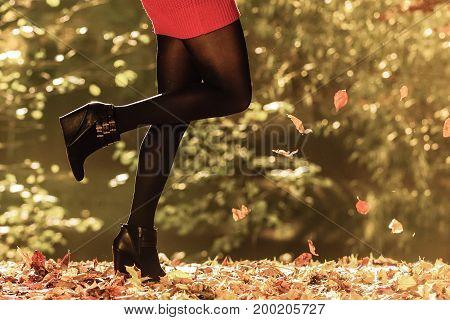 Autumn Fashion. Female Legs In Black Pantyhose Outdoor