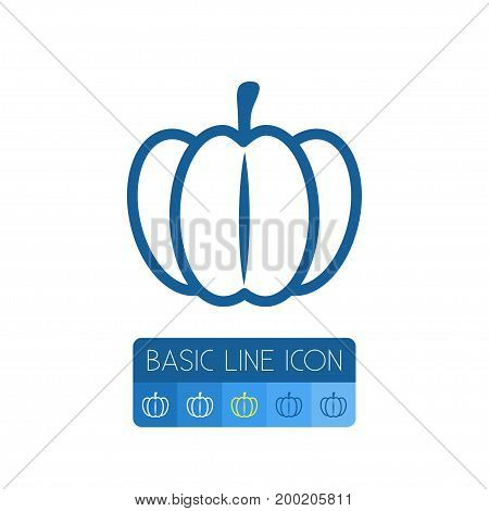 Gourd Vector Element Can Be Used For Gourd, Pumpkin, Squash Design Concept.  Isolated Pumpkin Outline.