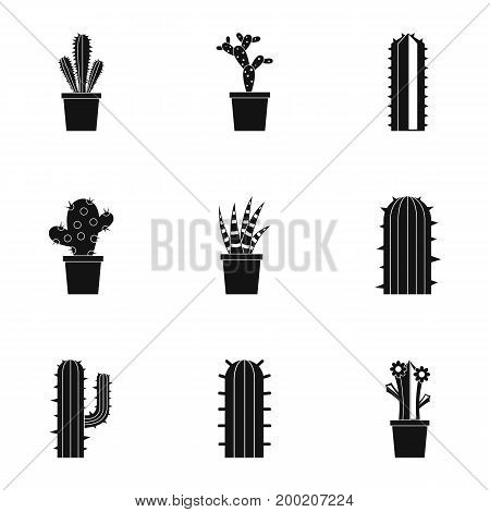 Desert cactus icon set. Simple style set of 9 desert cactus vector icons for web isolated on white background