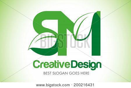 Green_leafletter80 [converted]