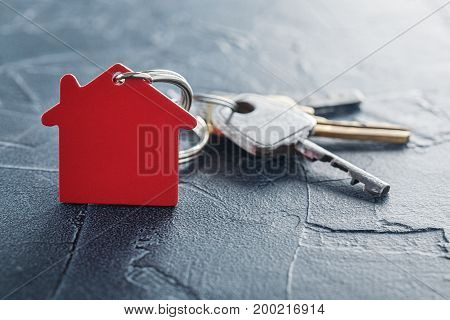 Estate Concept With Key, Red Keychain With House Symbol, Concrete